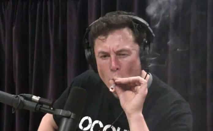 Elon Musk, peligro en Twitter